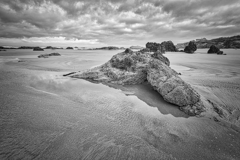 Quail Beach Series BW