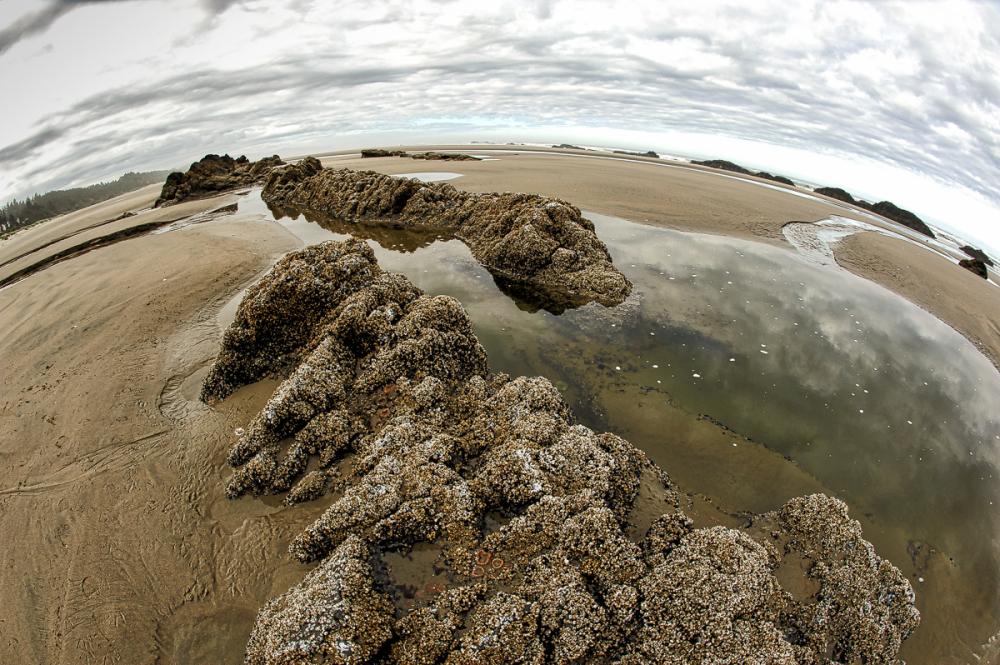 Quail Street Beach, Fisheye #2