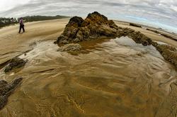 Quail Street Beach, Fisheye #3