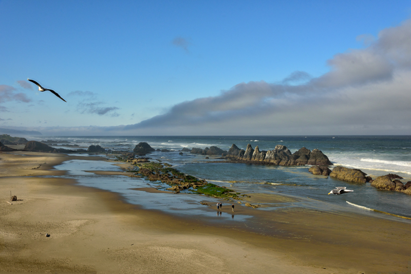 Seal Rock Beach