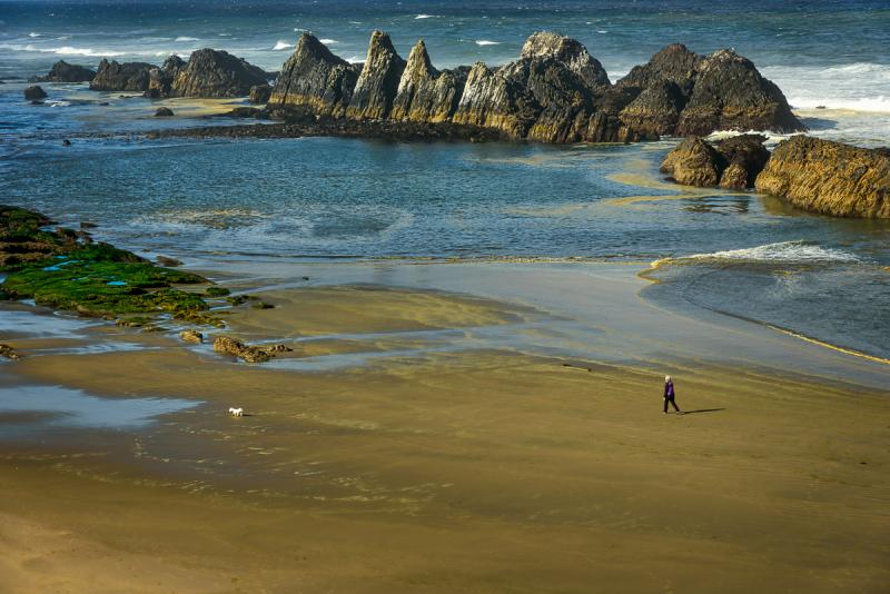 Ellie & Max Hitting the Beach