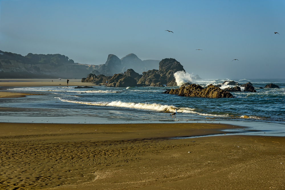 Seal Rock North #2