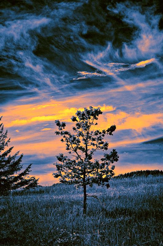 Solitude (Infrared); Topaz ReStyle