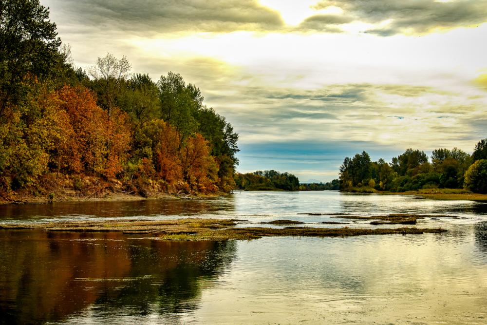 Autumn on the Willamette