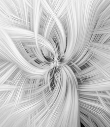 Graphic Beauty   Swirl