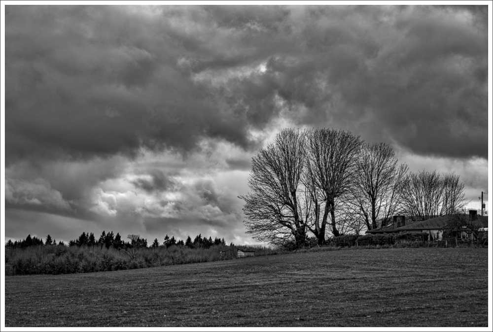 Corvallis Winter BW