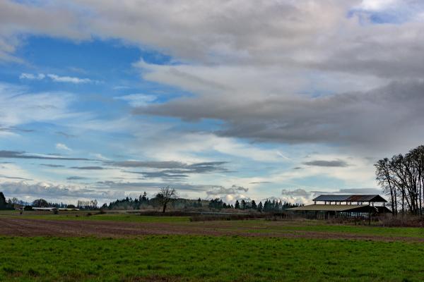 Exquisite Clouds 2