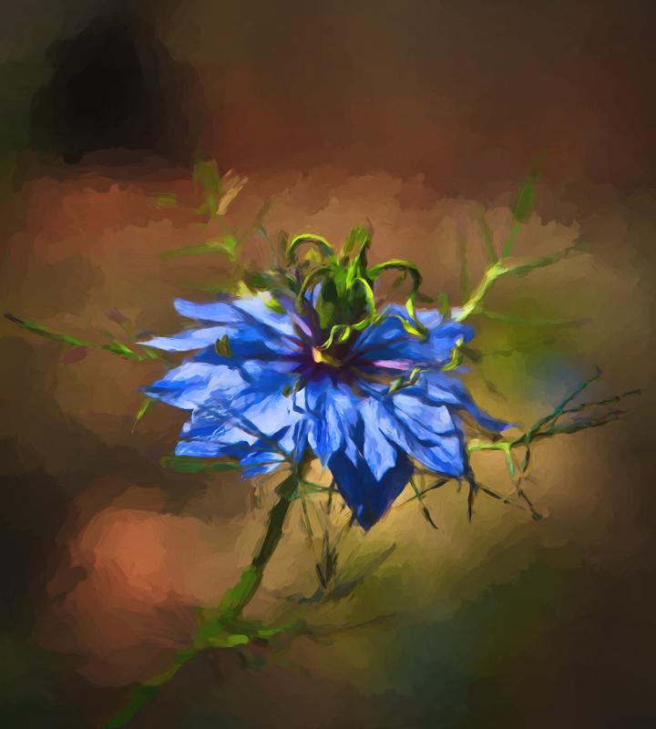 Spring Wild Flower #4 (Monet)
