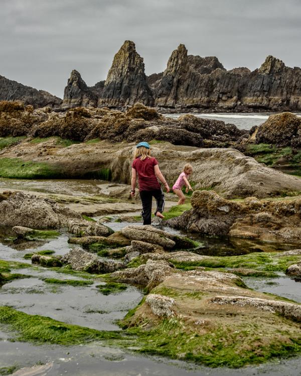 Seal Rock Beach (low tide)
