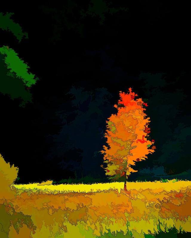 """""""Autumn Abstract"""""""