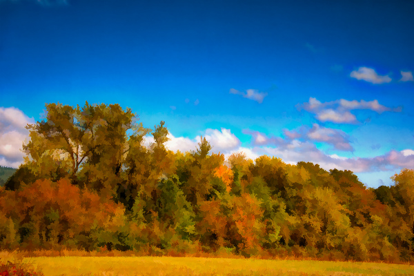 Beautiful Autumn Day (painterly)