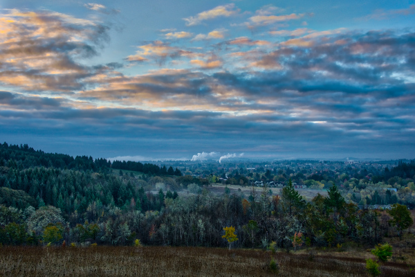 """Pre-sunrise Timberhill Natural Area"""