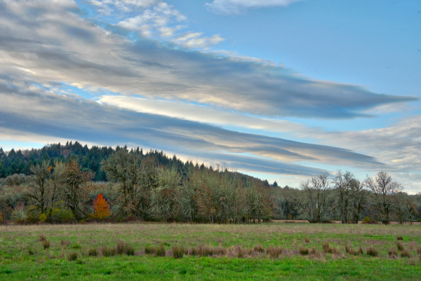 """Bald Hill Farm"" #2"