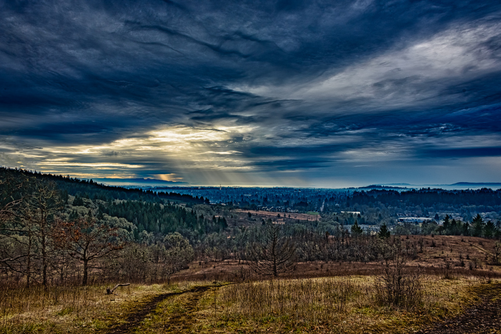 """Corvallis from the Timberhill Natural Area"""