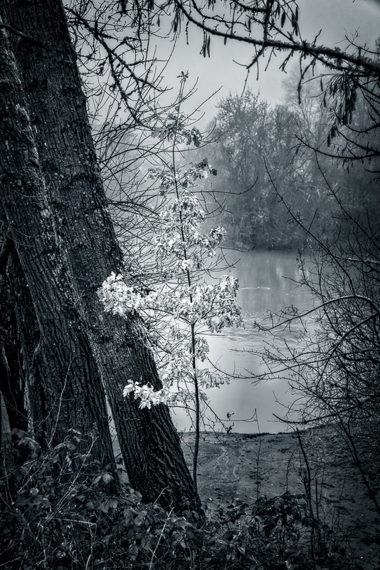 """Along the Mary's River, BW"""