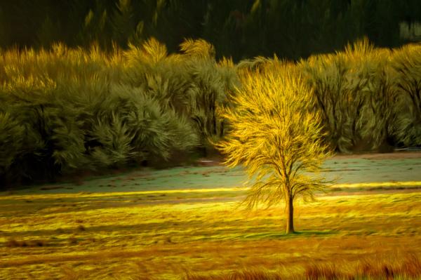 Gorgeous Light (Topaz Studio, Romantic Skies)
