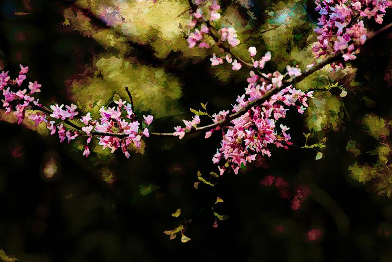 """Painterly Pink"""