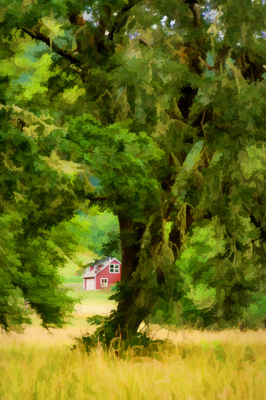 Bald Hill Farm - painterly