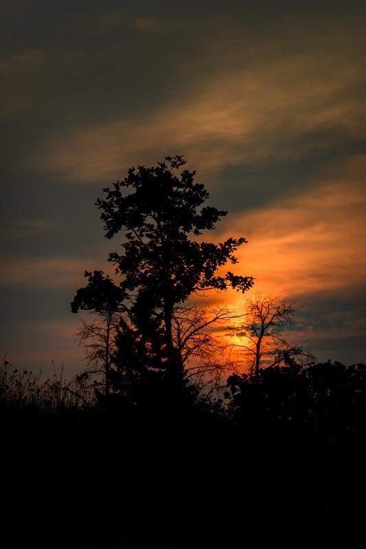 """""""Sunrise Thru Smoke & Haze"""""""