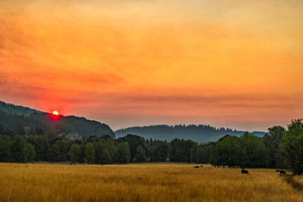 Bald Hill Sunrise