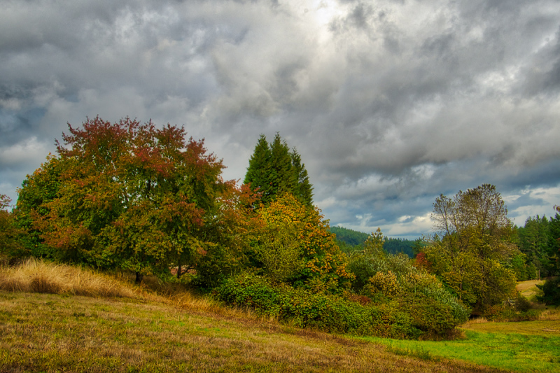 Colors & Clouds