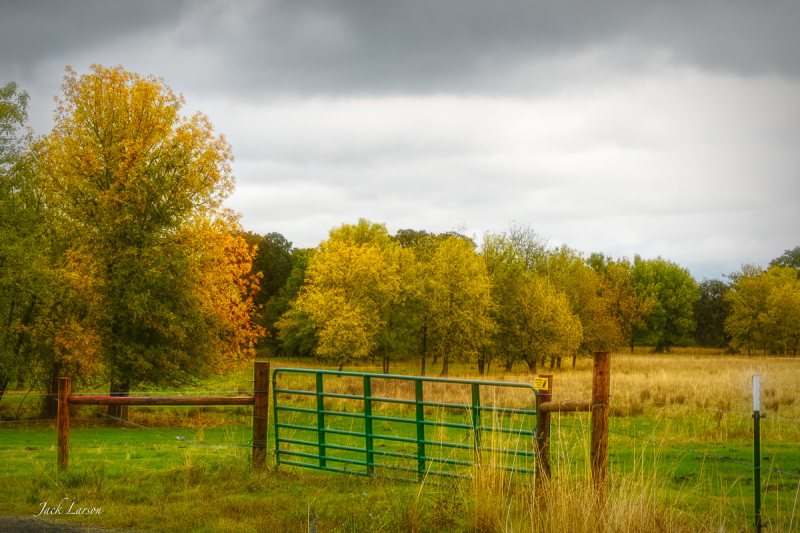 Autumn in Bald Hill Farm