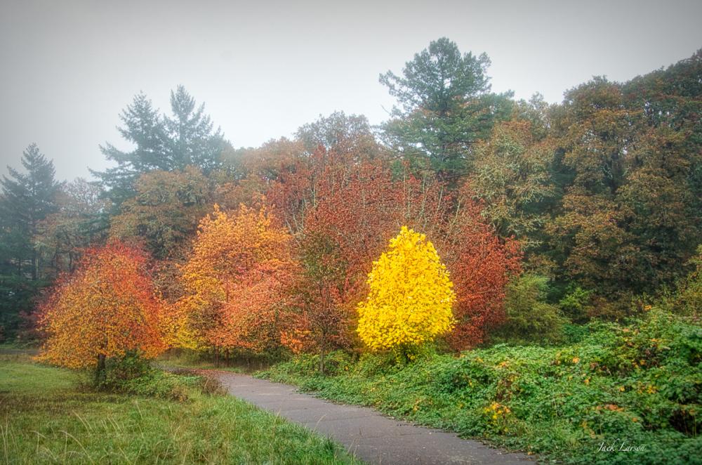 Colors Along Circle Trail