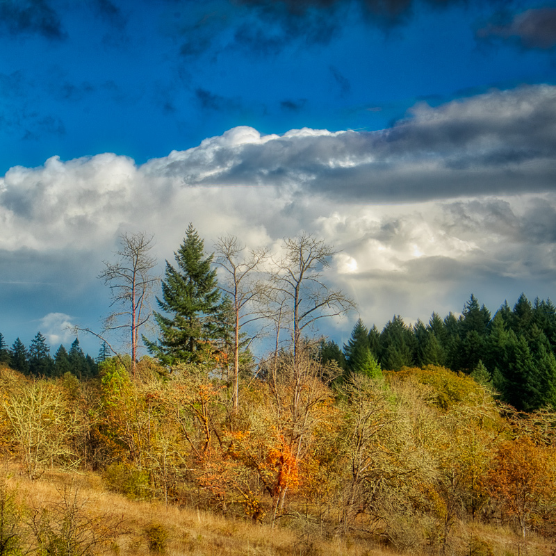 """Fall Rain Clouds in the TNA (cropped)"""