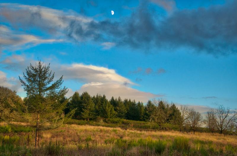 Moon at Sunset #3