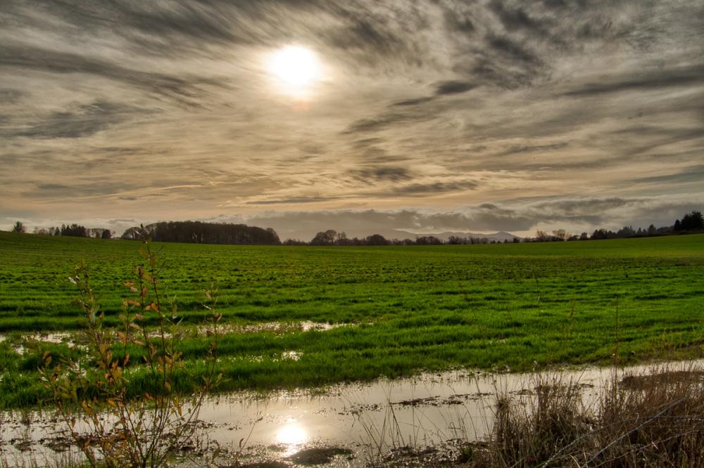 Willamette Valley Farmland