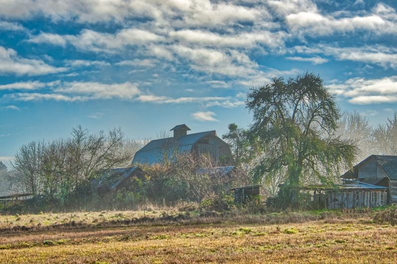 Same Barn on Christmas Day