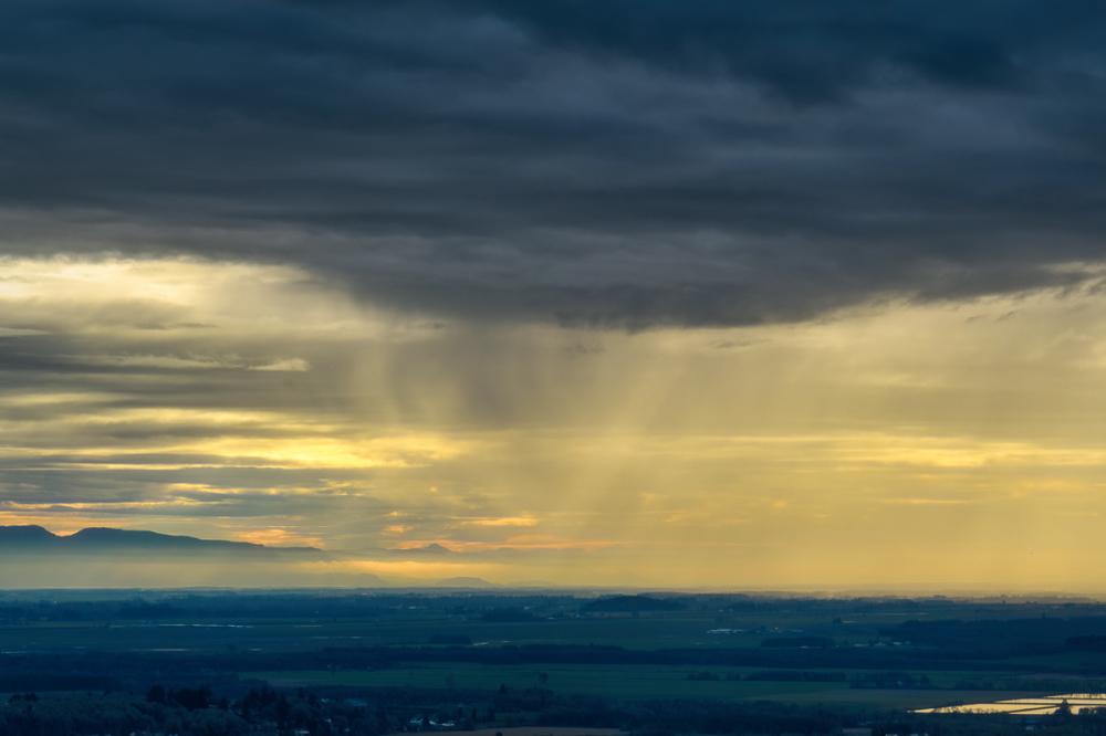 """Rain Coming Down"""