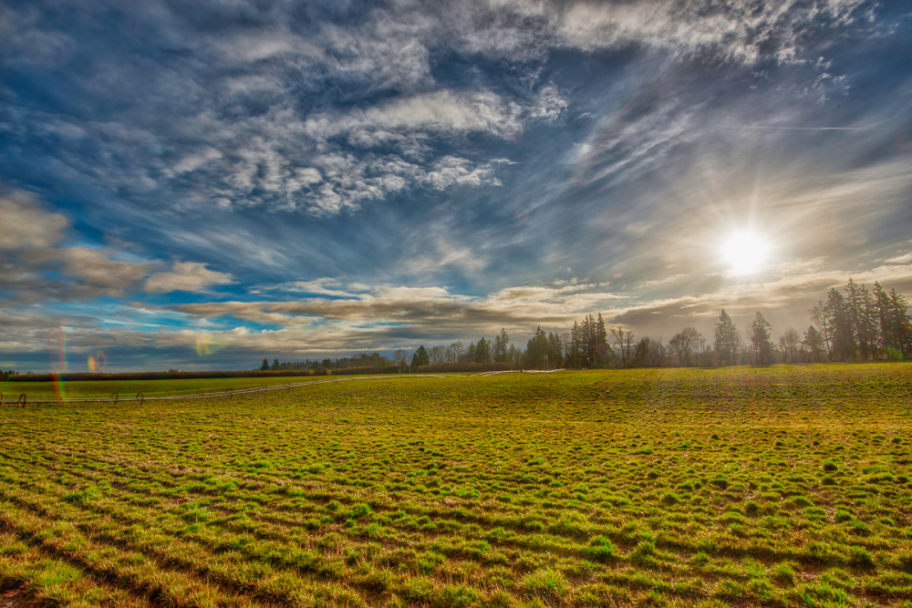 """Willamette River Farmland 16mm"""