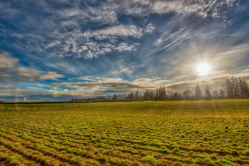 """""""Willamette River Farmland 16mm"""""""