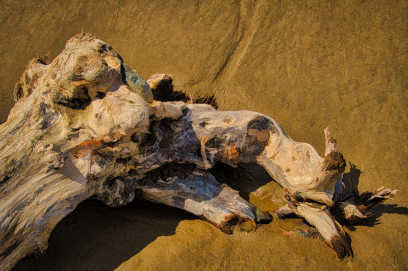 """Driftwood Art, Painterly"""