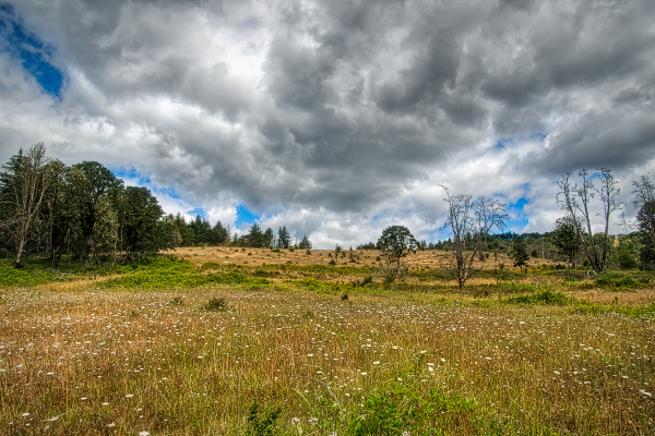 """""""2nd shot, Looming Clouds (emphasis on land)"""