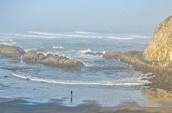 """Morning Walk""  Seal Rock Beach"