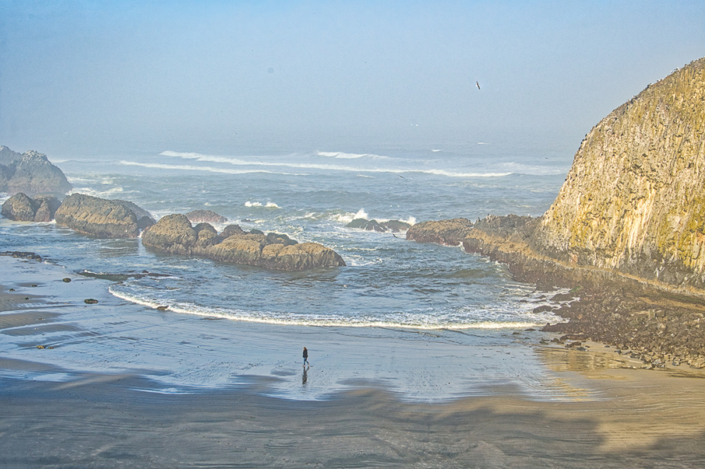 """Morning Walk""  Seal Rock Beach"