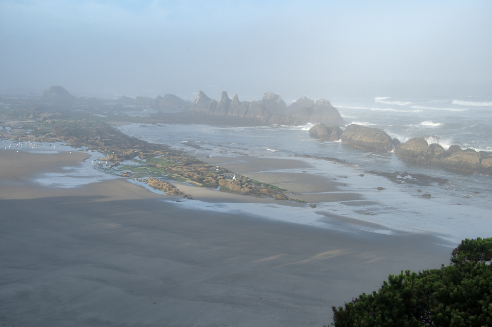 """Mystical Moody Morning"" (Seal Rock Beach)"