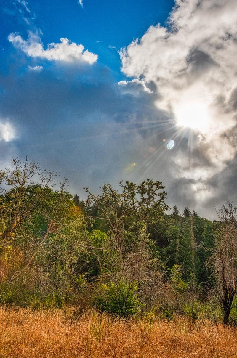"""Sunburst Through the Clouds"""