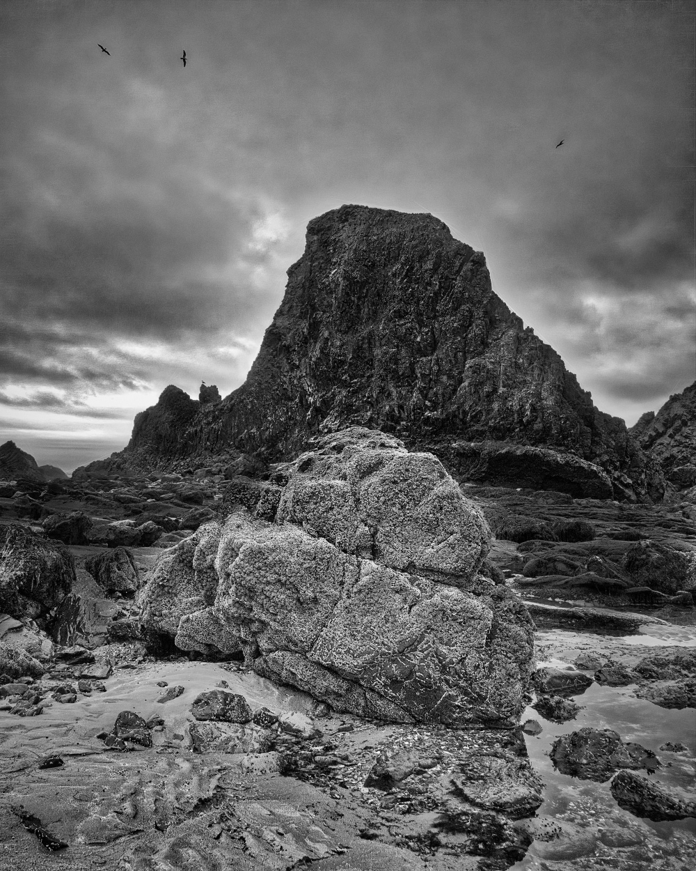 """Foreground Rock BW"""