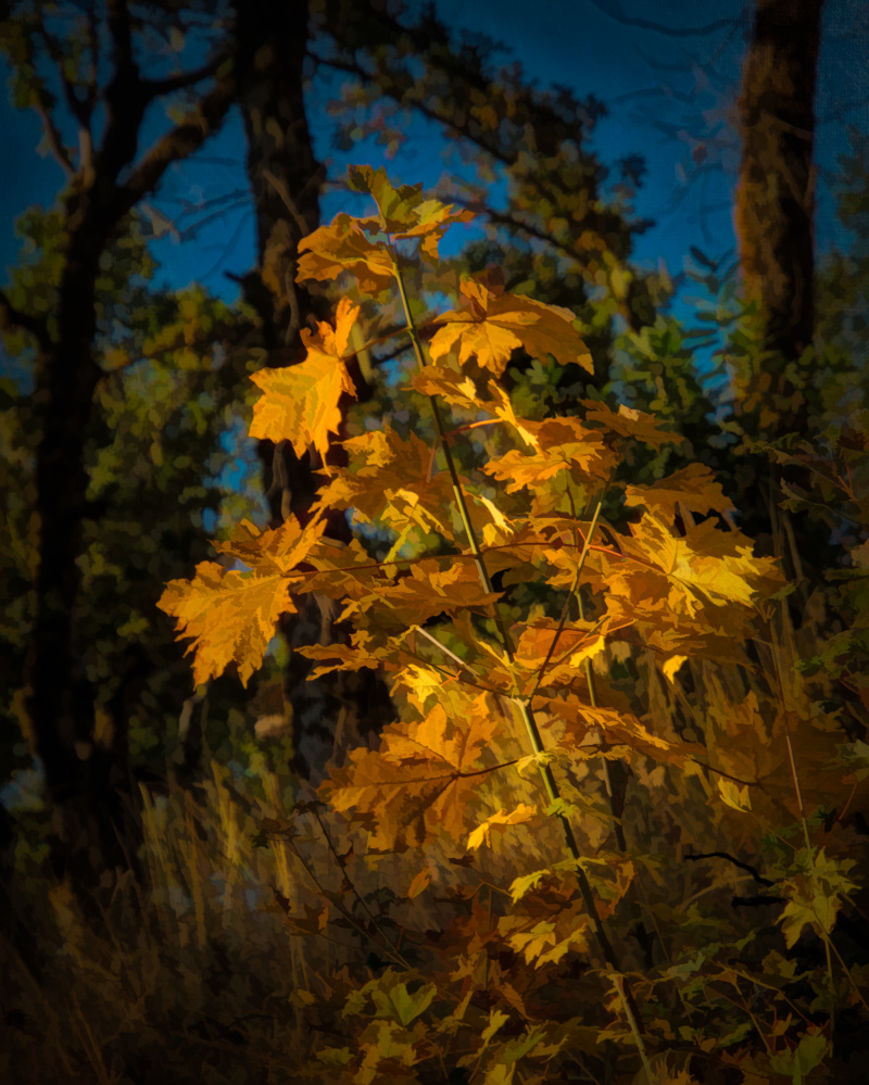 """Autumn Gold Painterly"""