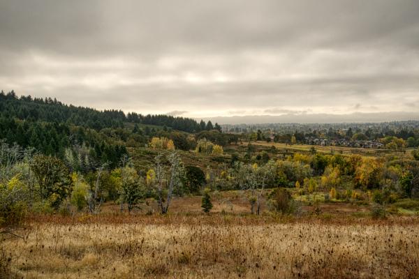 """Timberhill Natural Area Overlook"""