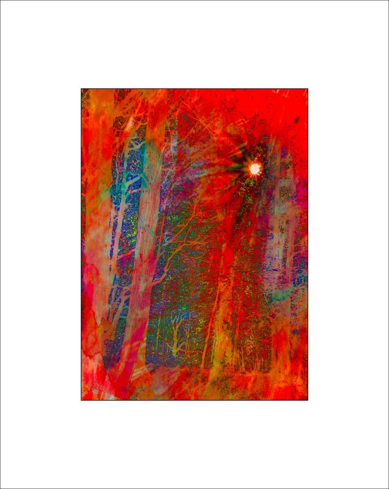 """Sunburst WNP, Abstract"""