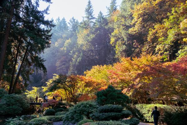 """Portland Japanese Garden"""