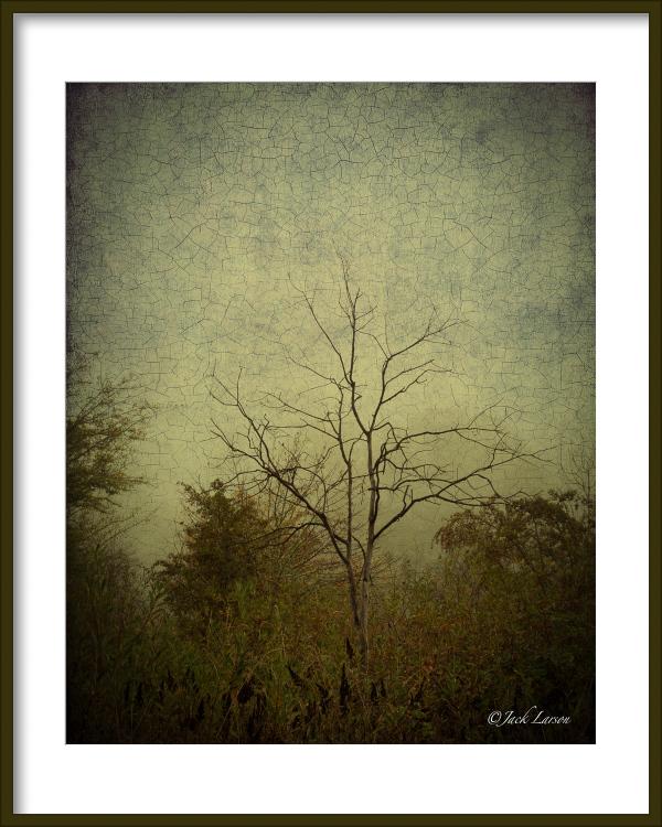 """""""Fog Art"""""""