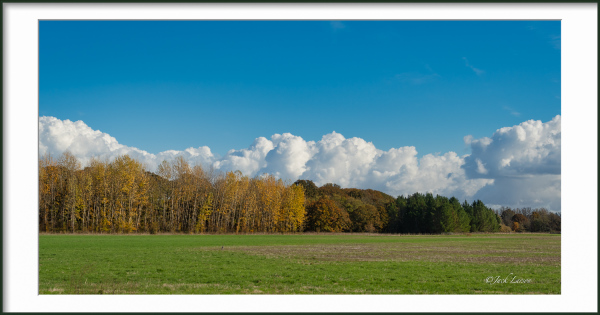 """Clouds and Aspen Panorama"""