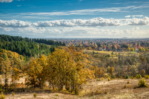 """""""Overlooking Corvallis"""""""