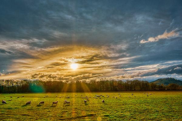 """Sun Going Down"""