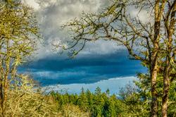 """""""Dark Clouds & Sun (Chip Ross Park)"""""""